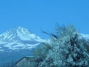 armenia_aragats_2012_02