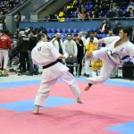 Киев: олимпиада боевых искусств
