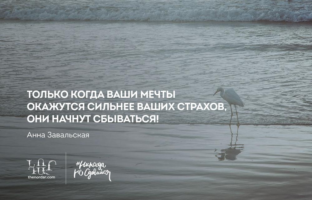nvgvp_8march_010