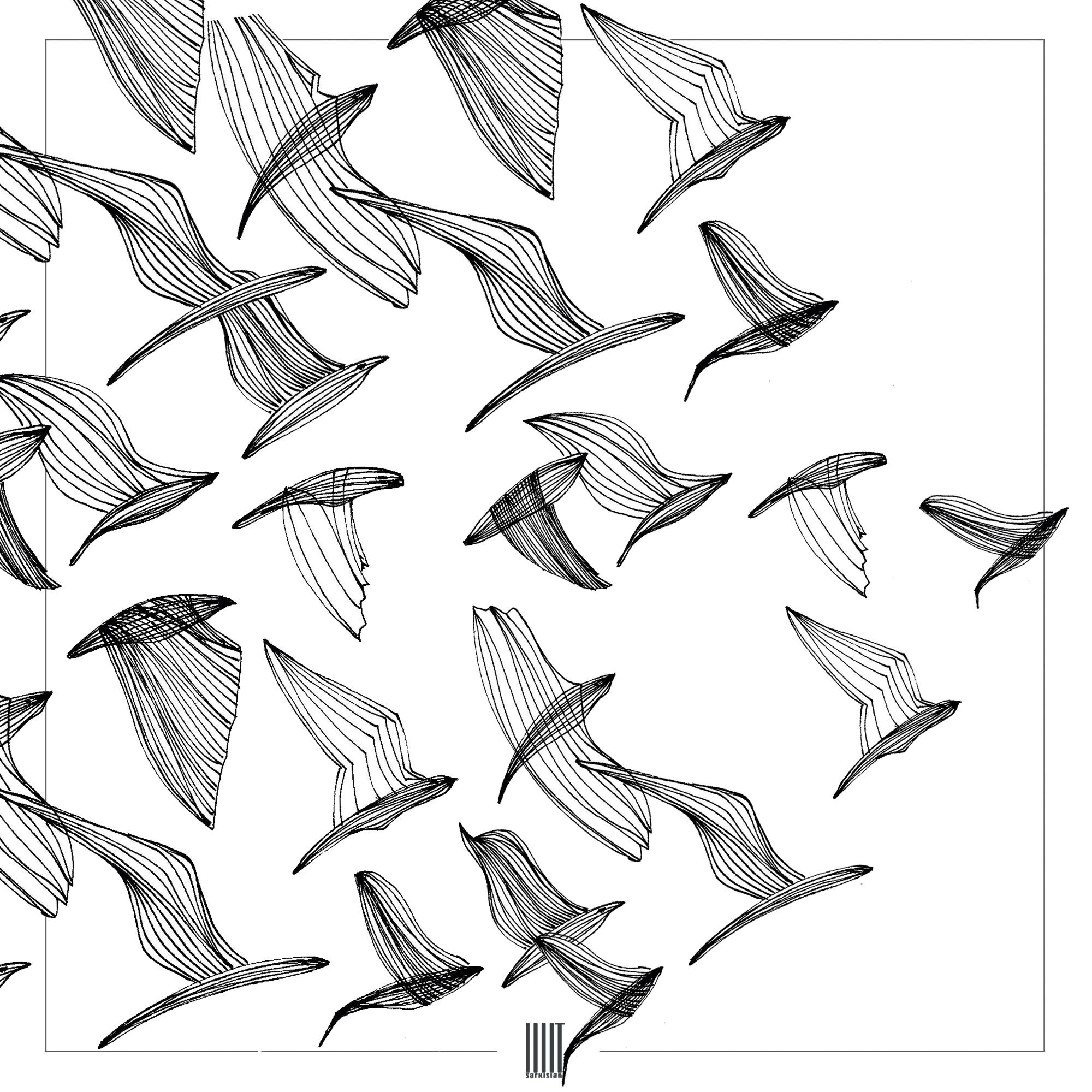 bird3_insta